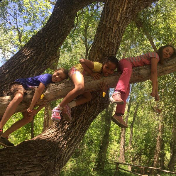 Adventure Days Camp in Jefferson County