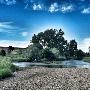 St. Vrain River in the summer